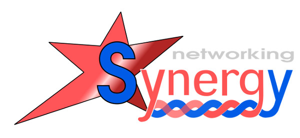 synergy-logo-web