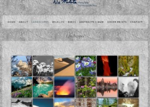 A screenshot of the landscape gallery page